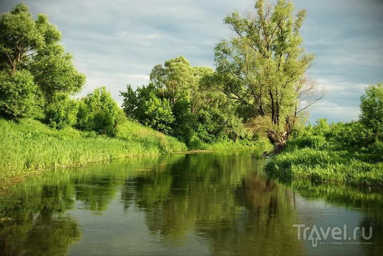 Лето. Июнь. Дивногорье / Фото из России