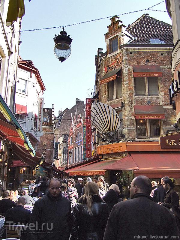 Рю де Буше в Брюсселе / Фото из Бельгии