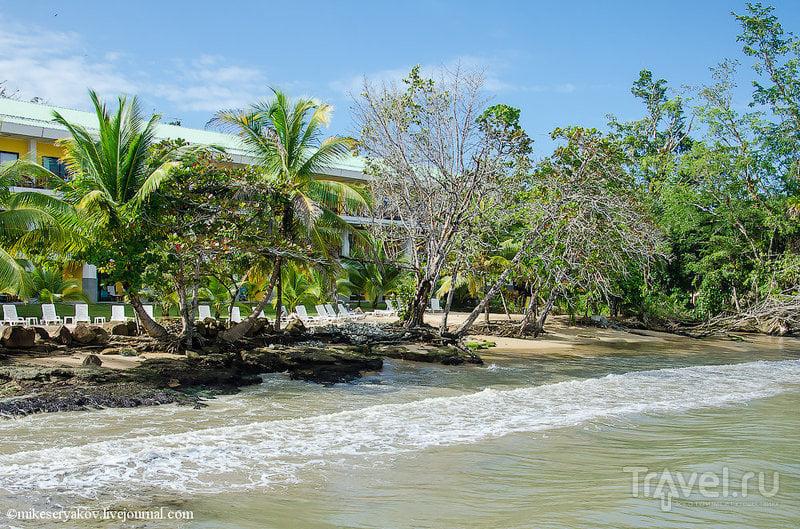 Отель Playa Tortuga, Панама / Фото из Панамы