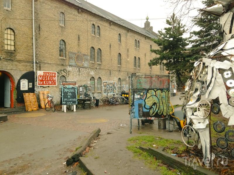 В Копенгагене есть квартал «Свободный город Христиания» | Кроссворды, Сканворды
