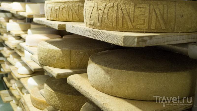 Ненда: как сыр в масле