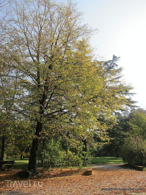 """Парк """"Акве Минерали"""" (Parco delle Acque Minerali) / Фото из Италии"""