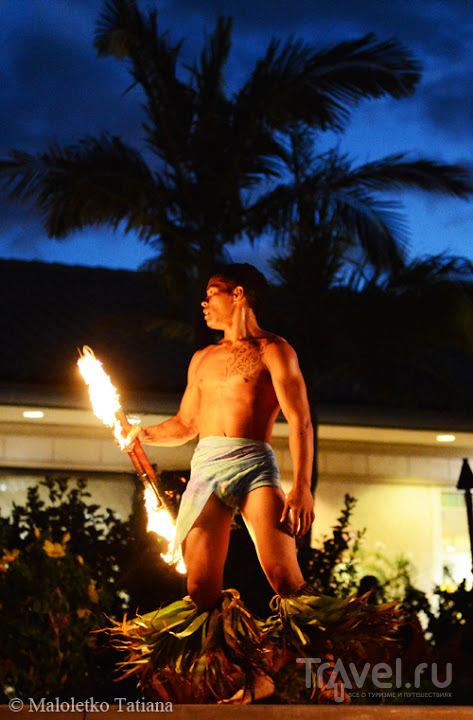 Гавайи: Большой остров / Фото из США