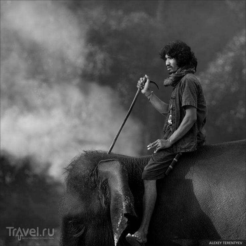 Chang и люди / Таиланд