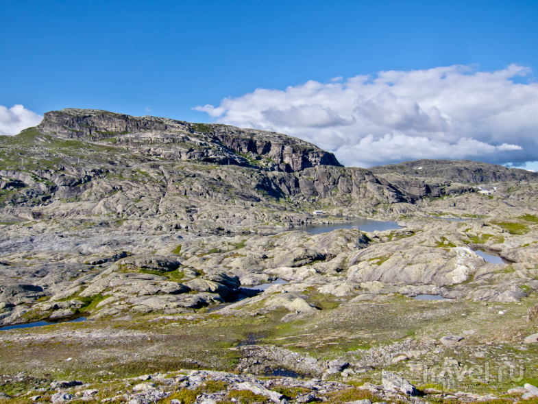 Язык Тролля / Фото из Норвегии