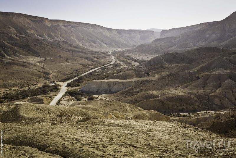 Вид на истоки реки Цин, Израиль / Фото из Израиля