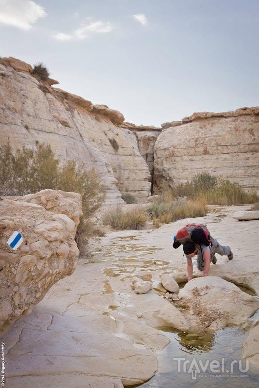 Источник реки Акев / Фото из Израиля