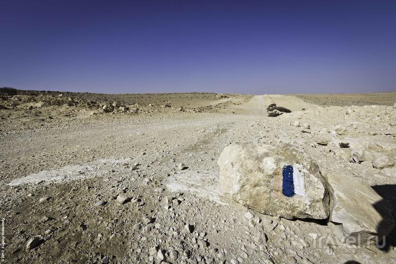 """""""Нефтяная линия"""" / Фото из Израиля"""