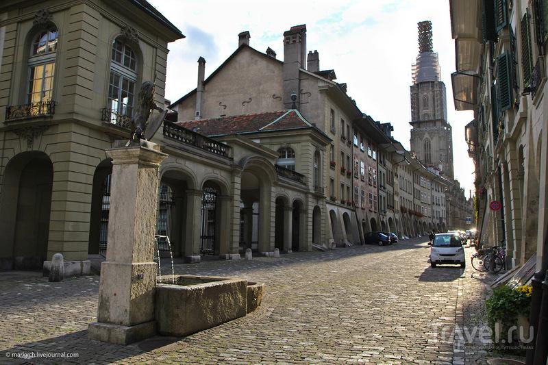 Бернский протестантский кафедральный собор / Фото из Швейцарии