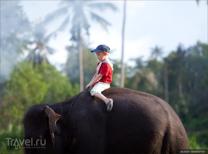 Путешествие втроем или отдых с детьми в вопросах и ответах / Таиланд