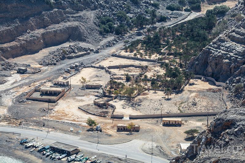 Поездка в Оман / Фото из Омана