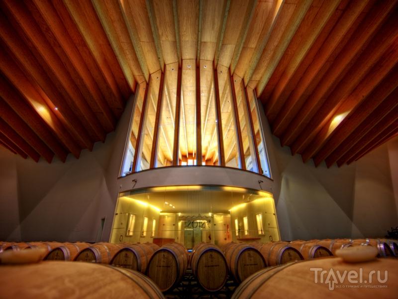 Во время экскурсии на винодельню можно продегустировать местные вина / Испания