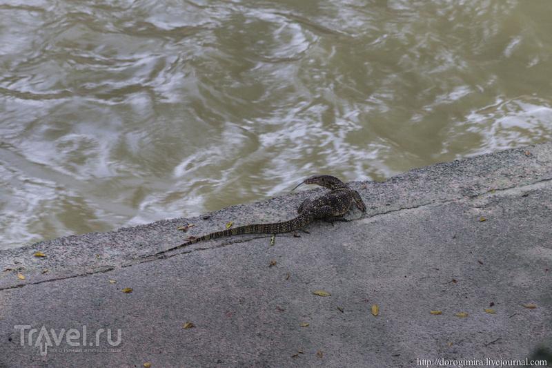 Мне есть, что рассказать вам про Куала-Лумпур / Фото из Малайзии