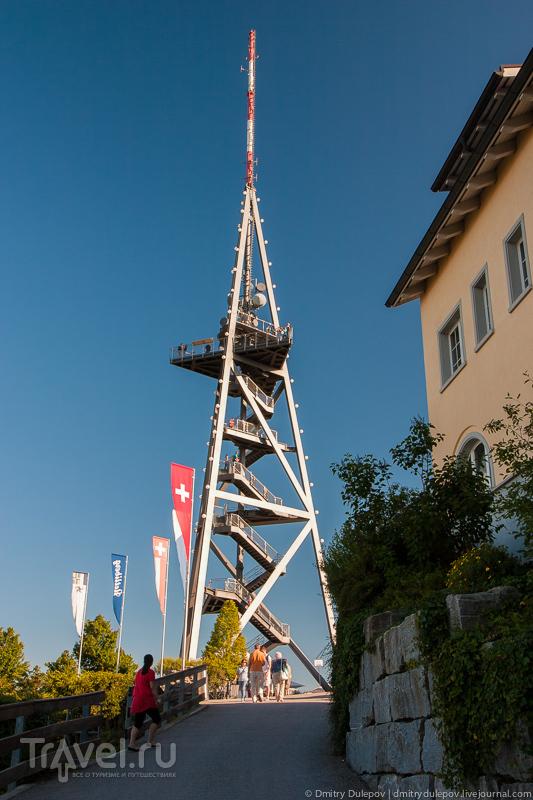Окрестности Цюриха: гора Утлиберг / Фото из Швейцарии