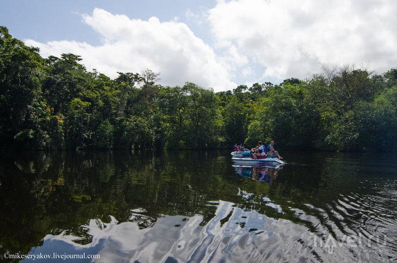 Прогулка по сладкой реке / Фото из Гватемалы