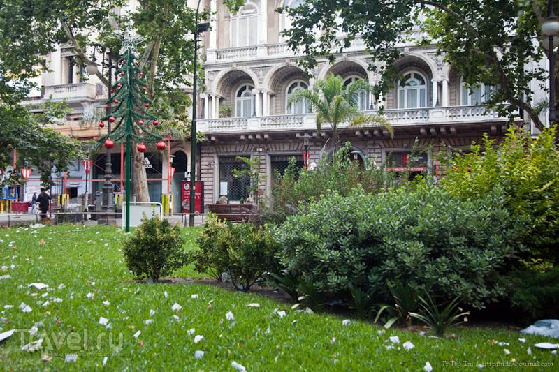 Площадь Матриз в Монтевидео / Фото из Уругвая