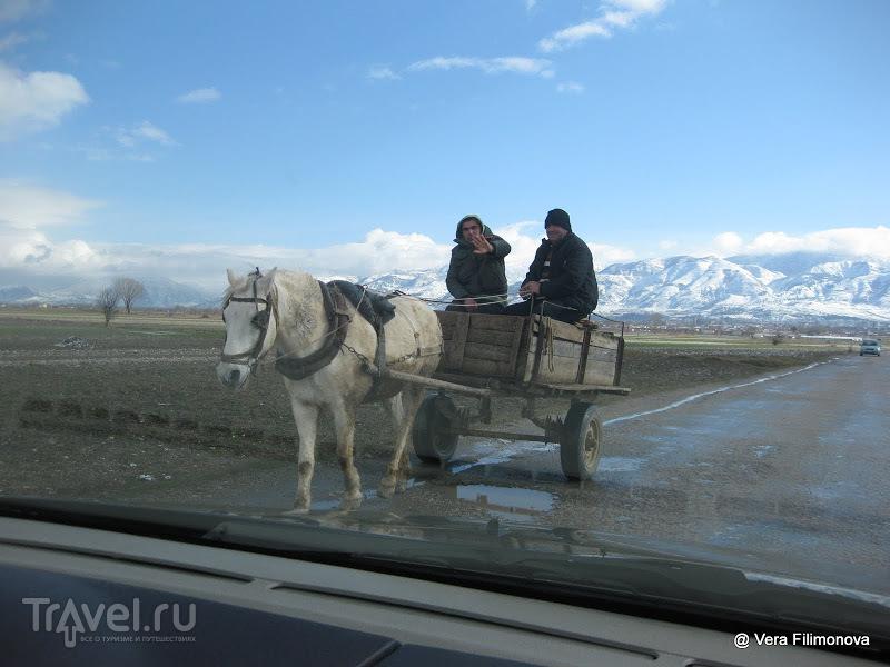 Путешествие из Тираны в Воскопою и обратно / Албания