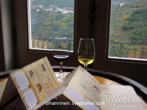 Романтические виноградники португальской винодельни Пиньо / Португалия