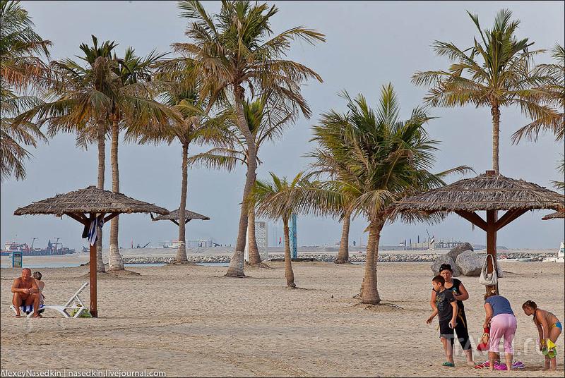 Пляж Аль-Мамзар в Дубае / Фото из ОАЭ
