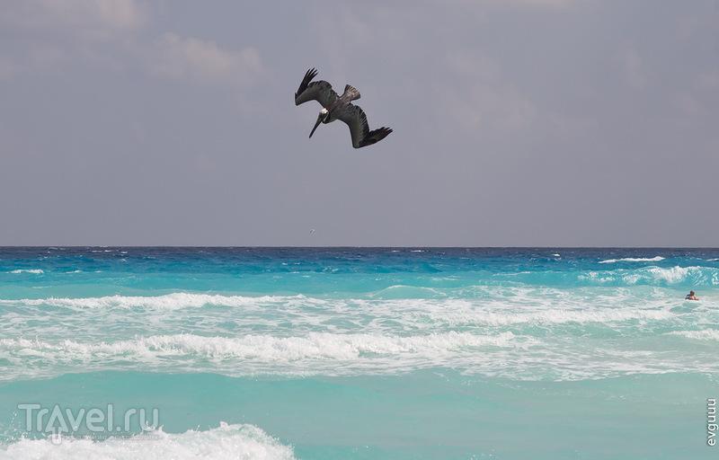 Мексика. Канкун. Zona Hotelera / Фото из Мексики