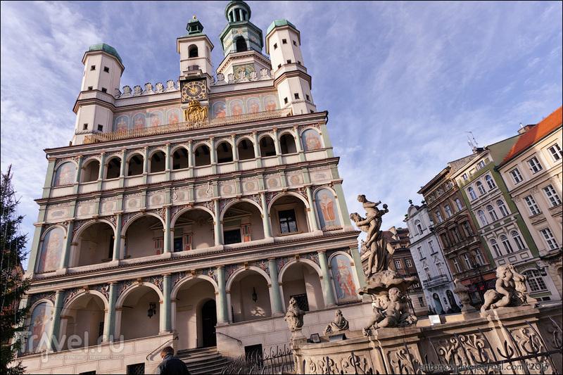 Городская Ратуша в Познани / Фото из Польши