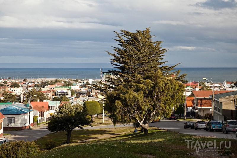 В городе Пунта-Аренас / Фото из Чили
