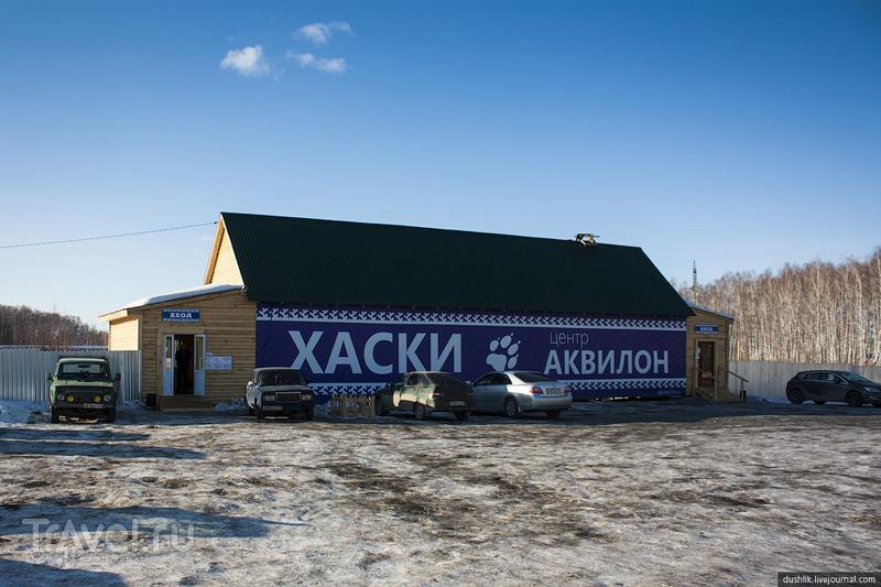 В центре северной культуры, Россия / Фото из России