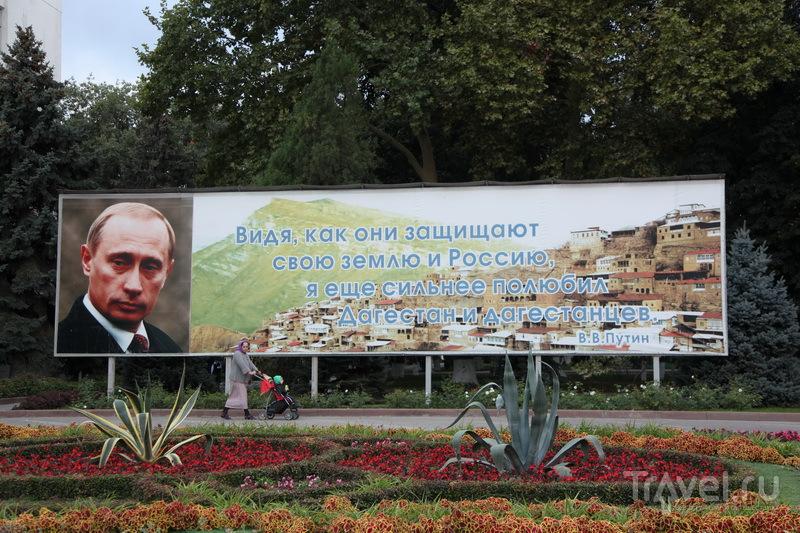 В. Путина на Кавказе любят и уважают / Фото из России