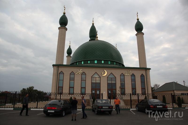 Мечеть в окрестностях Назрани / Фото из России
