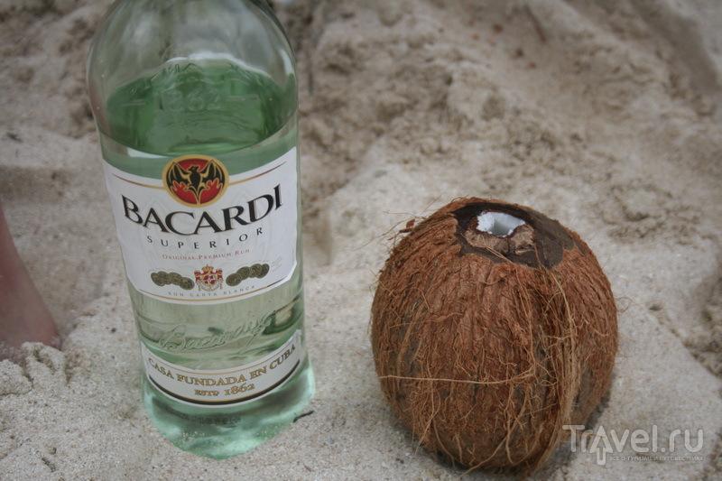 Кокосы, лобстеры и ром / Панама