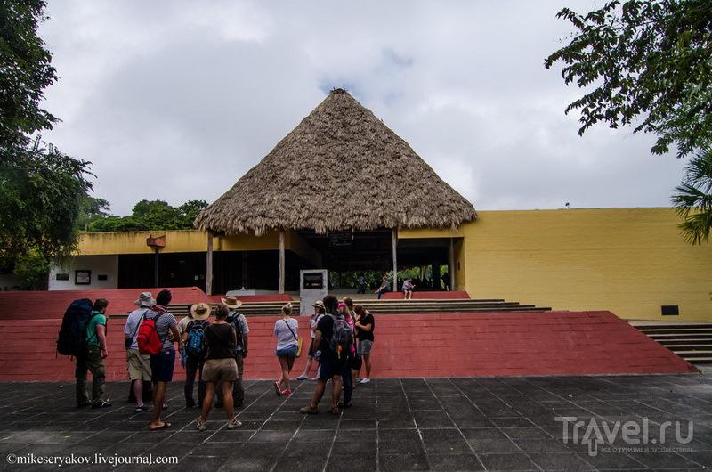 Поселение майя Тикаль, Гватемала / Фото из Гватемалы