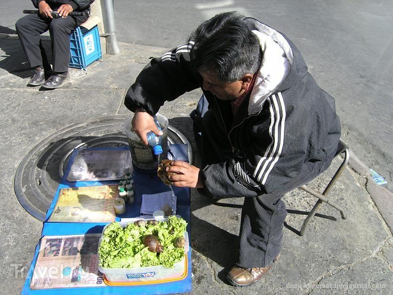 Ой, улитки у меня чуть не померли! / Боливия