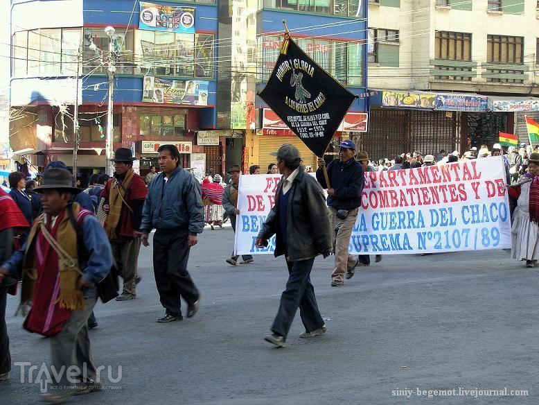 Демонстранты несут флаги своих департаментов / Боливия