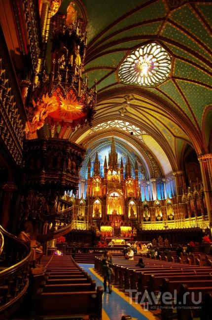 День в Монреале / Фото из Канады