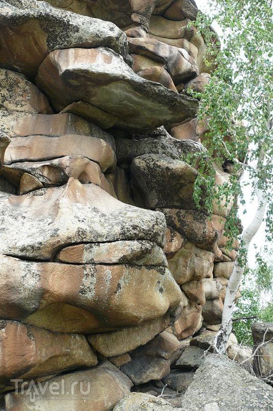 Семизбуга - природа Казахстана / Казахстан