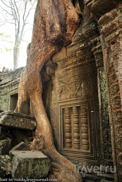 Ангкор, изюминка Камбоджи / Камбоджа
