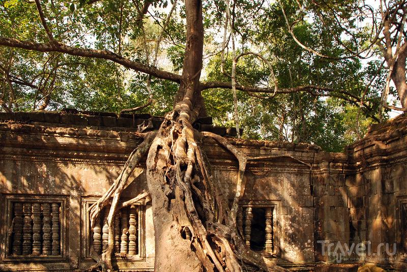 Храм Бенг-Мелиа (Beng Melea), Камбоджа / Фото из Камбоджи