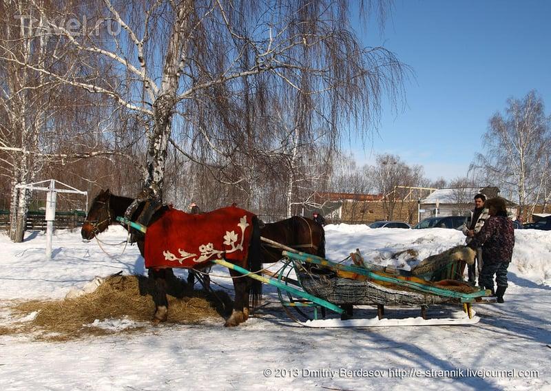 В селе Константиново / Фото из России