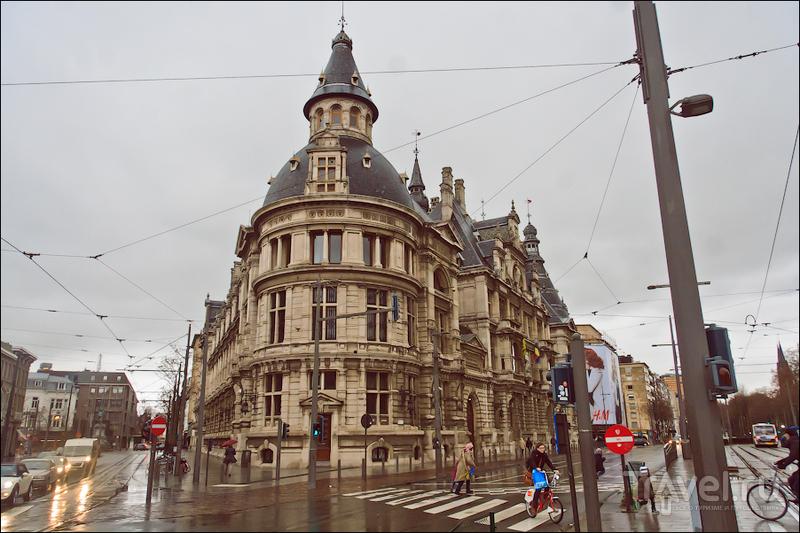 Антверпен перед Рождеством / Фото из Бельгии