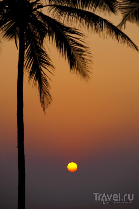 Индия, штат Керала, курорт Ковалам и пляжный отдых с ребёнком / Индия