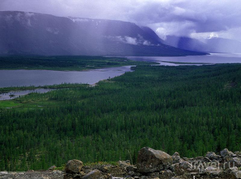 Устье реки Иркингды, Россия / Фото из России