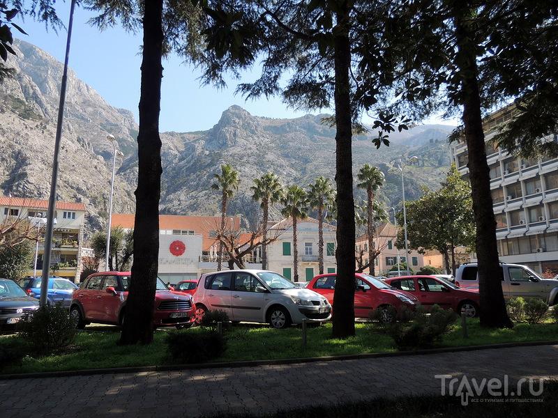 Город Котор, Черногория / Фото из Черногории