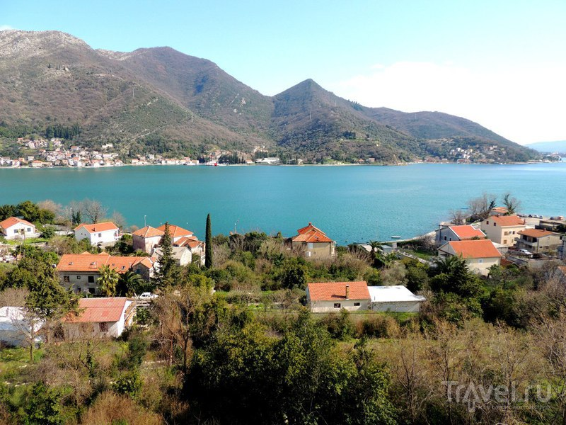 Вид на Боко-Которскую бухту, Черногория / Фото из Черногории