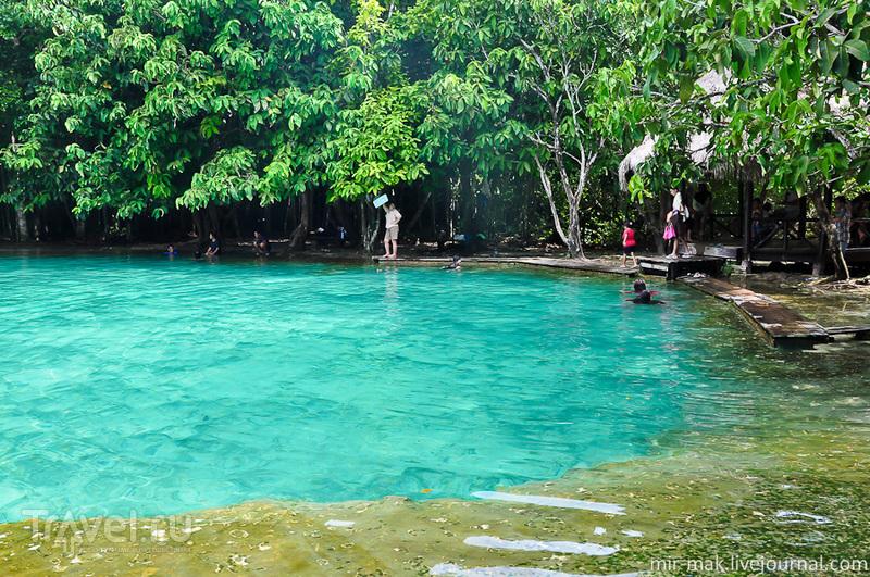 Изумрудное озеро на Краби, Таиланд / Фото из Таиланда
