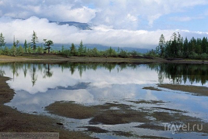 Отшельник Хантайского озера / Россия