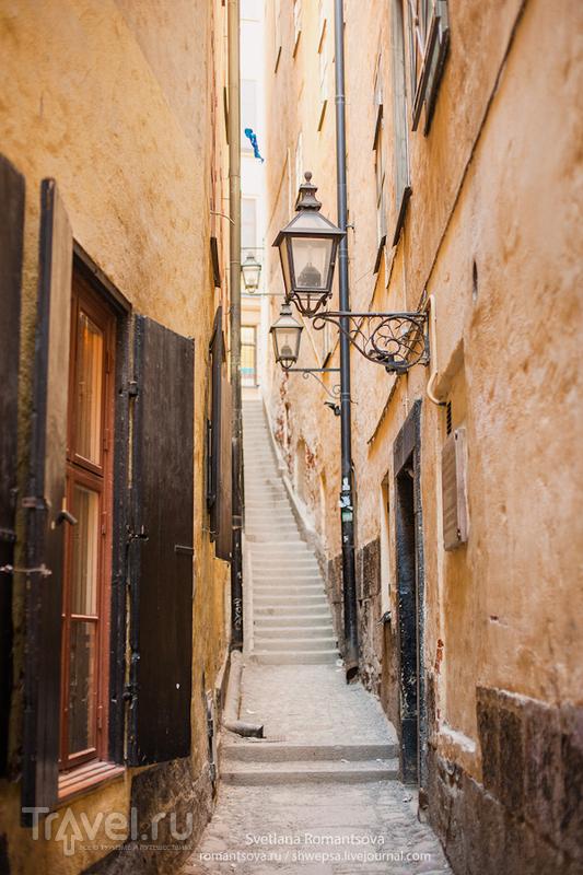 Переулок Мортена Тротцига, Стокгольм / Фото из Швеции