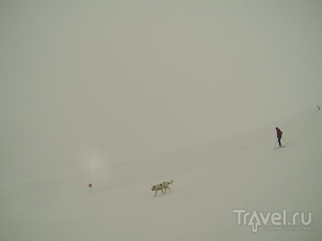 Лыжный курорт Гудаури / Грузия