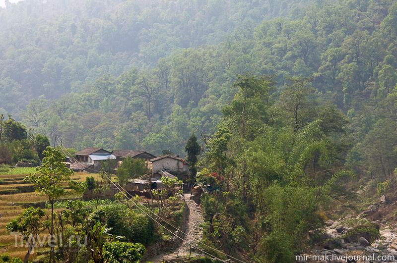 Поселок Наяпул, Непал / Фото из Непала