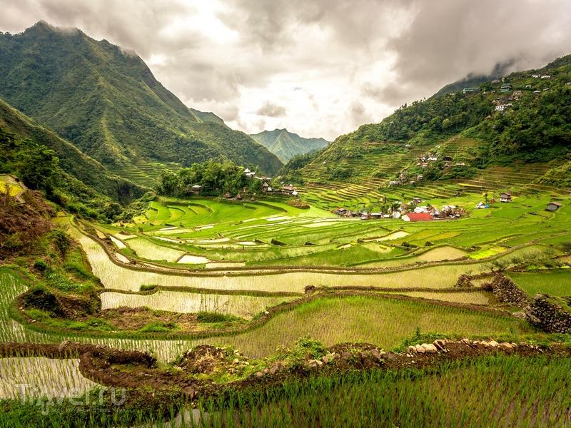 Прогулка по рисовым террасам занимает от нескольких часов до нескольких дней / Филиппины