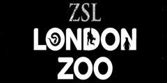 Посетители зоопарка понаблюдают за ночной жизнью животных. // zsl.org